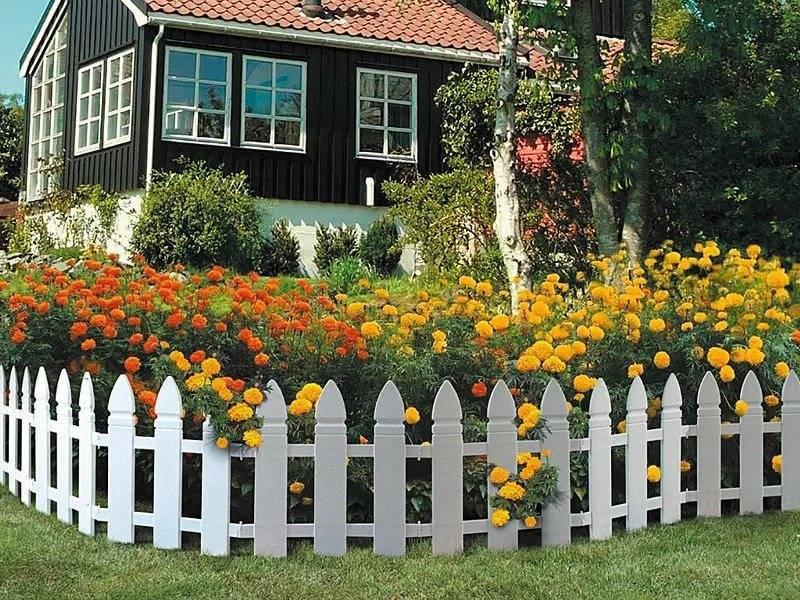 Ландшафтный дизайн перед домом: 75 идей оформления на фото