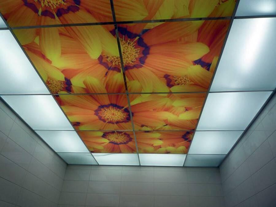 Потолок в туалете своими руками можно сделать как зеркальный, реечный, так и натяжной, подвесной