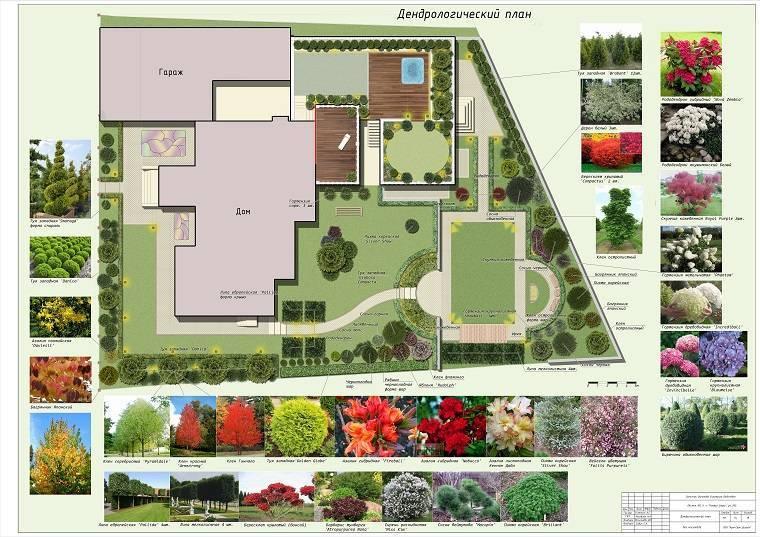 Планировка участка (179 фото): обустройство дачного земельного приусадебного участка, ландшафтный дизайн территории