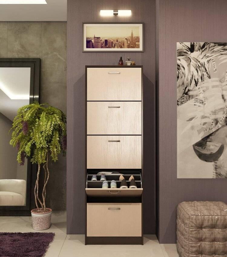 Шкаф для обуви в прихожую каким бывает, а также его преимущества и недостатки