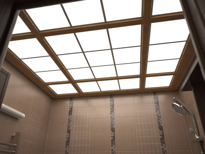 Потолок в туалете своими руками: варианты и методы установки