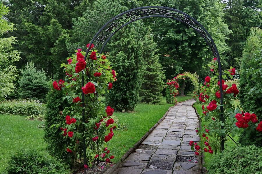 Садовые арки для украшения сада