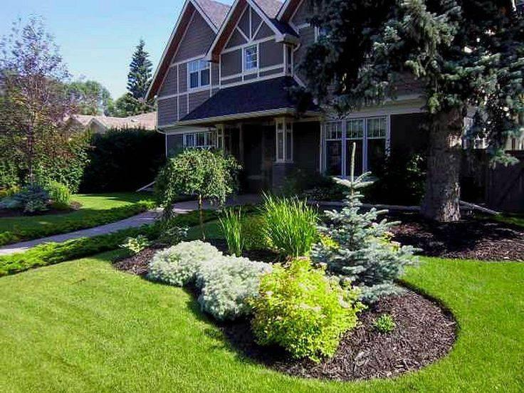 Клумбы на газоне (54 фото): названия газонных цветов, как отделить цветочный газон от цветника, чем лучше, красивые примеры и идеи дизайна