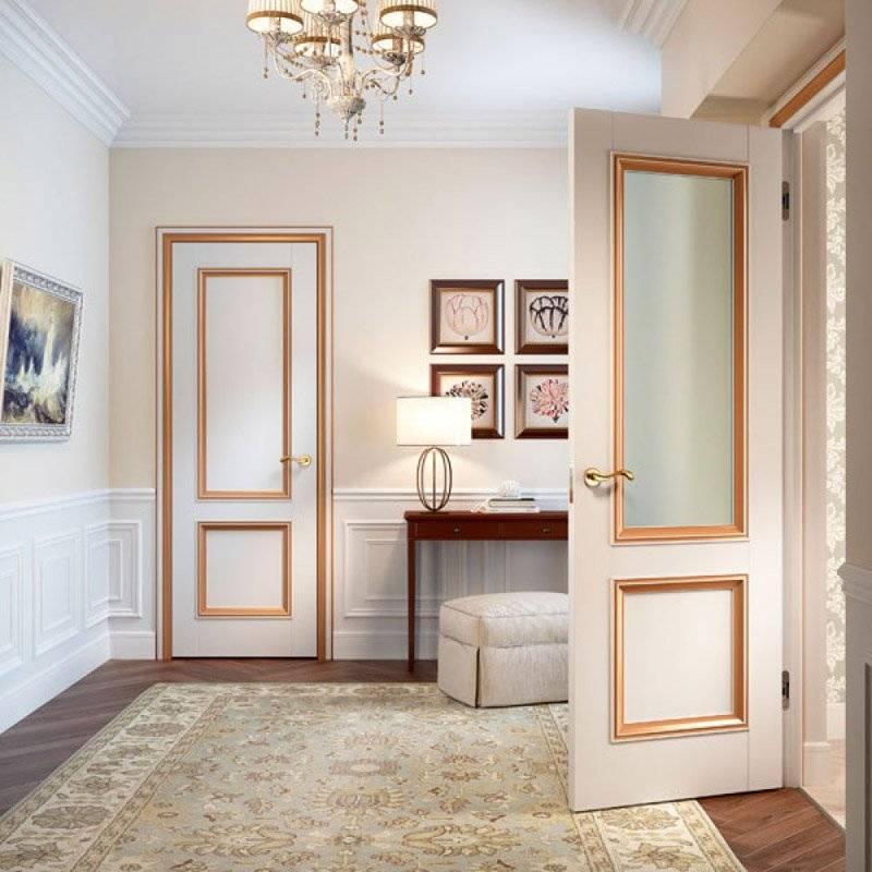 Темные двери в интерьере +75 фото   правильный дизайн квартиры и дома