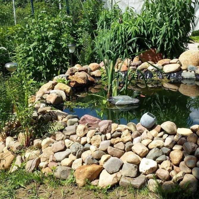 Как на даче сделать пруд: инструкция по созданию своими руками