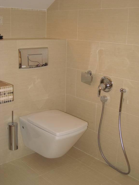 Гигиенический душ для унитаза со смесителем: назначение, разновидности, варианты размещения