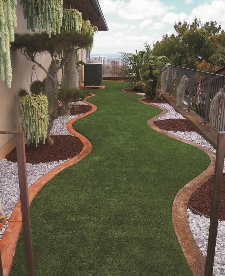 Рулонный газон: виды и правила ухода