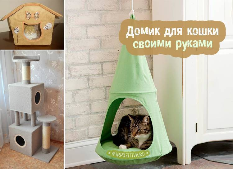 Как сделать домик для кошки своими руками — идеи и пошаговая инструкция изготовления места для котика (105 фото)