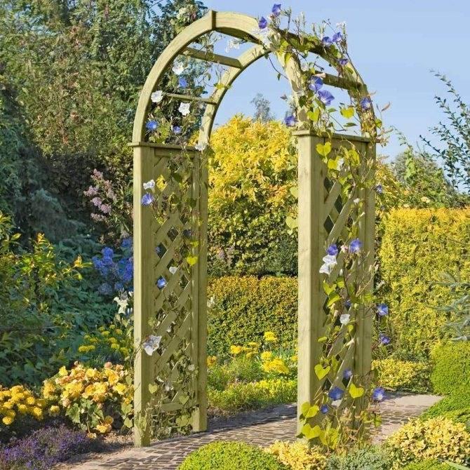 Красивая садовая арка: обзор самых красивых конструкций и особенности их применения (95 фото)