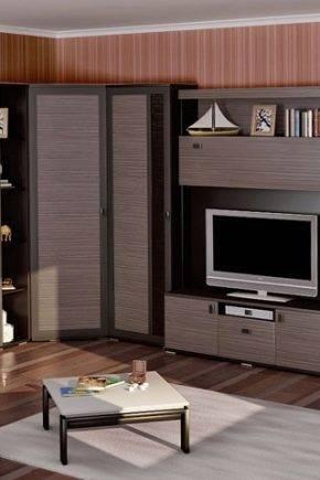 Угловые шкафы в гостиную: виды, выбор и варианты в интерьере