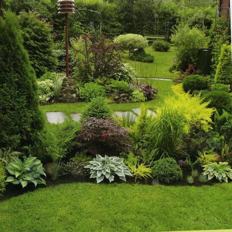Декоративный плодовый сад в ландшафтном дизайне