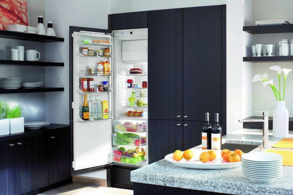 Кухня без верхних шкафов: советы и самые красивые идеи дизайна (50 фото)   современные и модные кухни