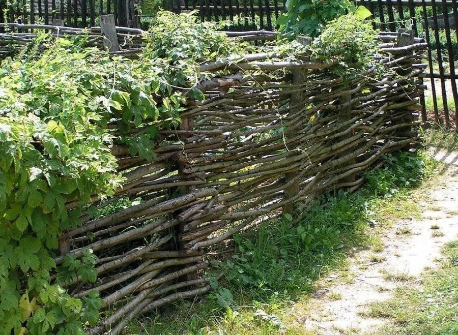 Забор своими руками из подручных материалов - варианты конструкций