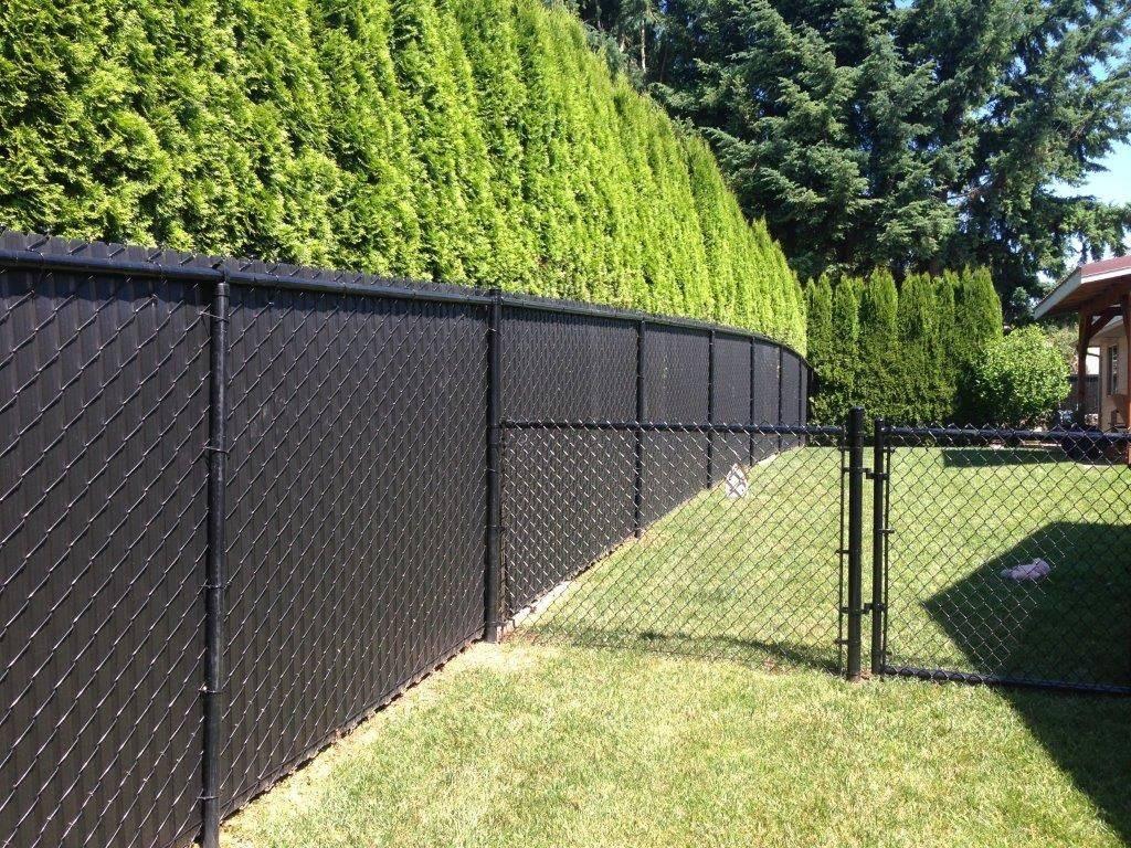 Какой забор лучше поставить на даче дешево и красиво