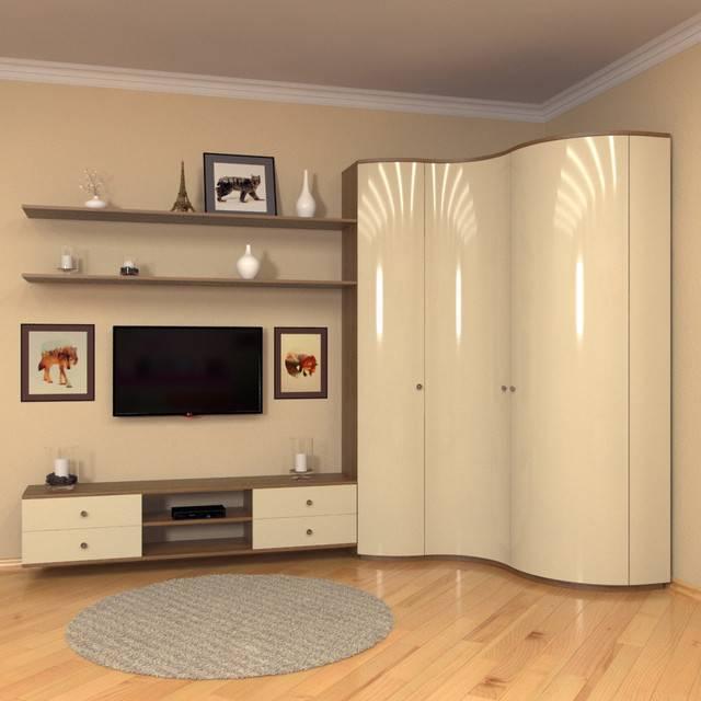 Шкаф в гостиную под телевизор: виды, советы по выбору и размещению
