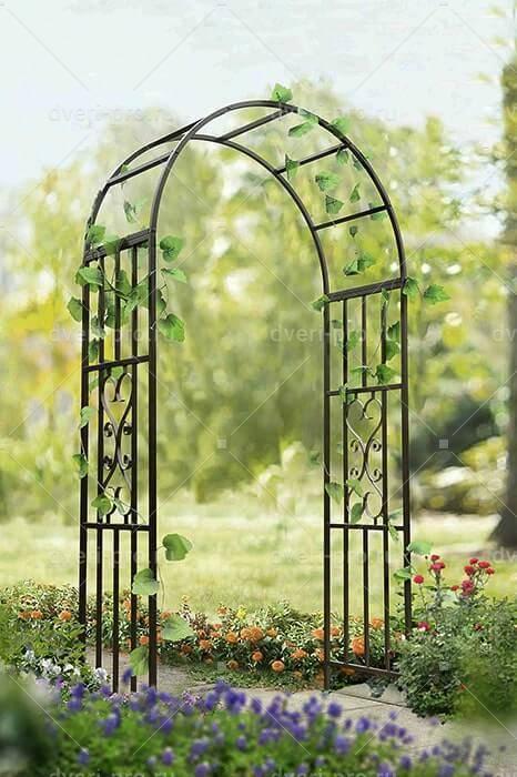 Арки для роз в саду: виды, где лучше установить, как оформить