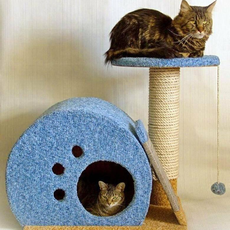 Домик для кошки своими руками: как сделать дом для кота из картонных коробок, фанеры, ткани - пошаговые инструкции, чертежи и фото