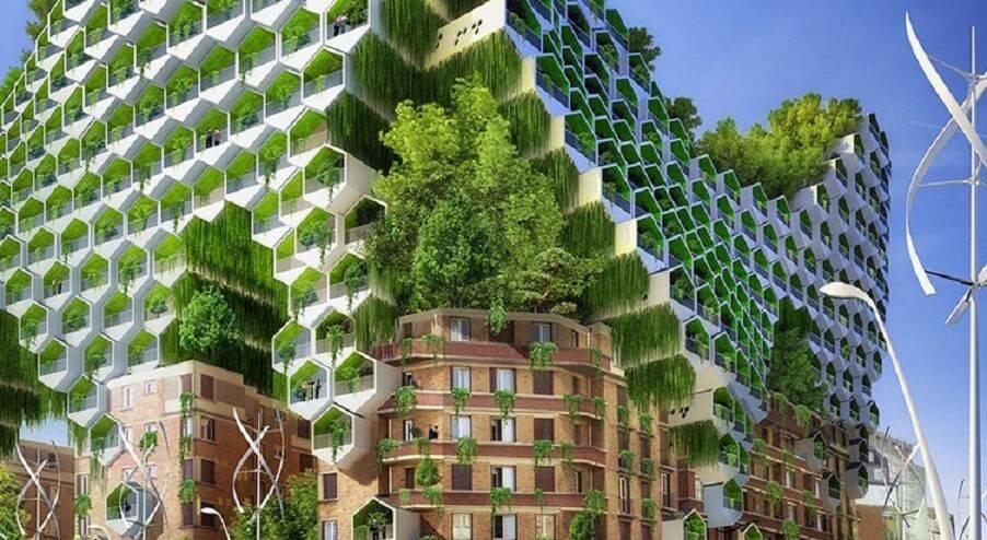 Экологически благополучные районы и города подмосковья