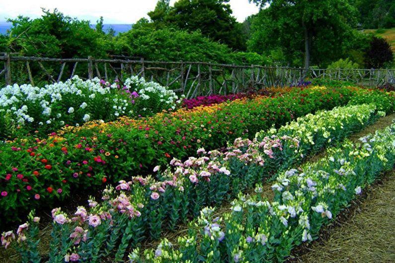 Эустома многолетняя — посадка и уход луковичного растения, зимовка | сад и огород