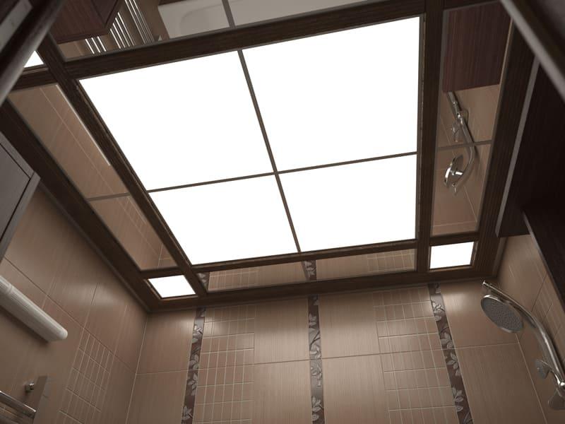 Потолок в туалете, какой лучше: натяжной, подвесной, реечный, из пвх панелей?