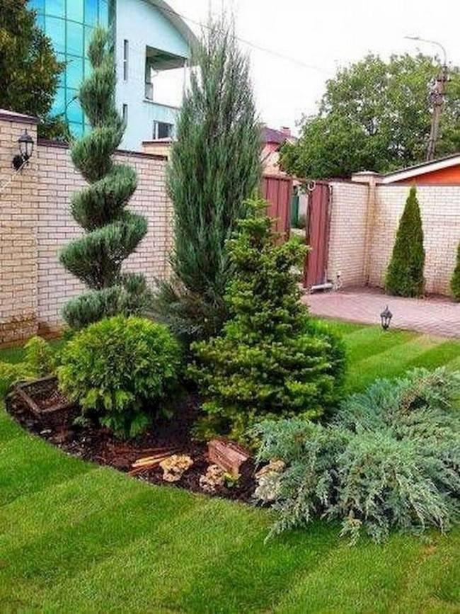 Красивые композиции из хвойников в ландшафтном дизайне сада
