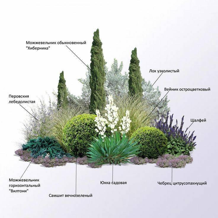 Ландшафтный дизайн (114 фото):красивый современный дизайн земельного участка, светильники для ландшафта