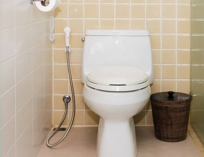 Как пользоваться гигиеническим душем - всё о сантехнике