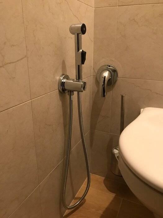 Что лучше — биде или гигиенический душ
