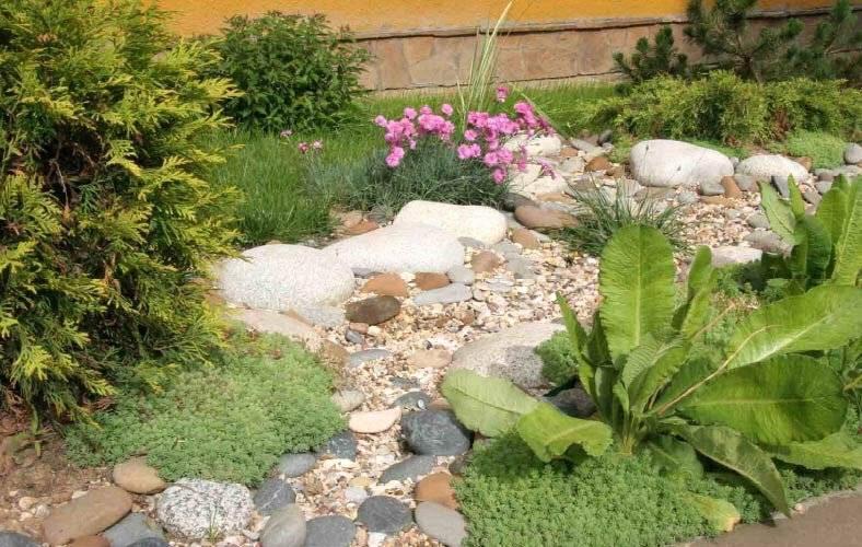 Использование сухого ручья в ландшафтном дизайне на даче