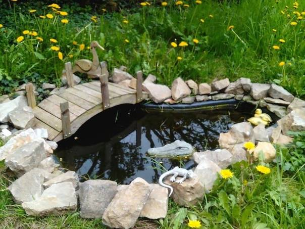 Пруд в саду своими руками фото: оригинальные идеи и дизайн