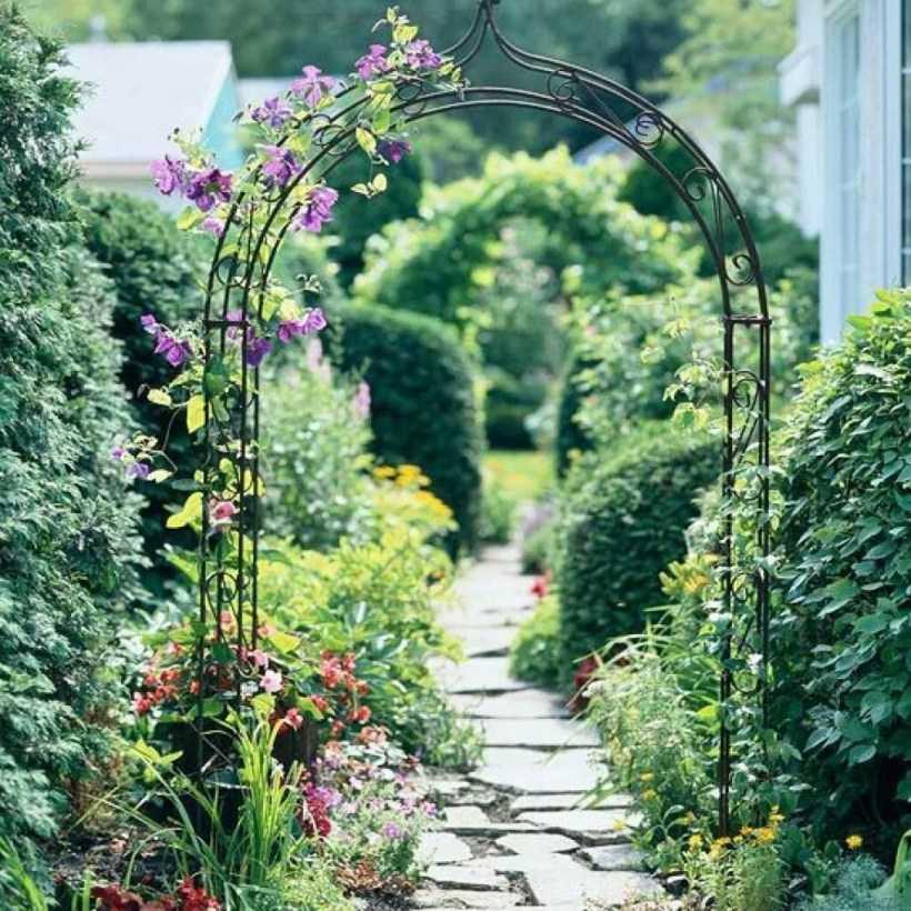 4 группы растений, которые идеально подходят для цветочной арки