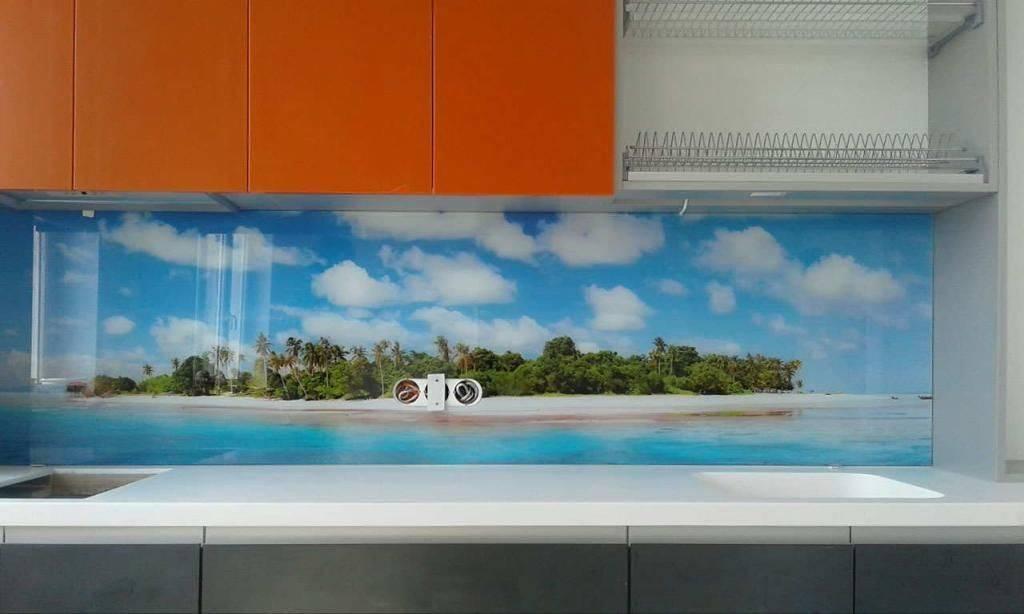 Фартук для кухни из пластика (44 фото): настенный фартук из прозрачного абс-пластика. размеры стеновых панелей с фотопечатью