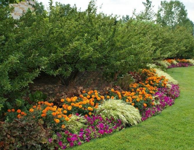 Ландшафтный дизайн цветника (60 фото): виды клумб и их оформление рядом с домом своими руками, как оформить цветник возле забора