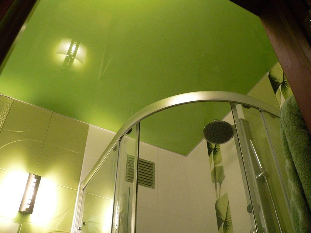 Различные варианты отделки потолка в туалете