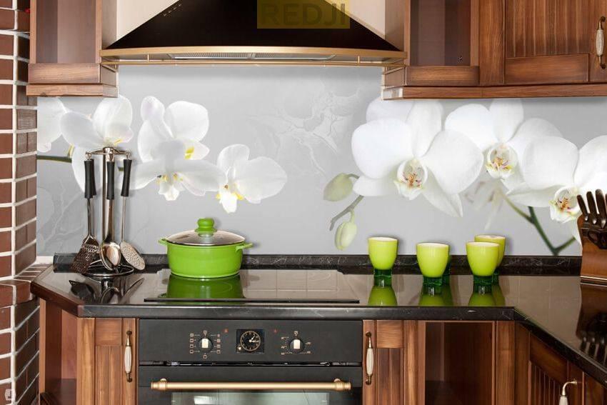 Варианты дизайна пластиковых фартуков для кухонного помещения
