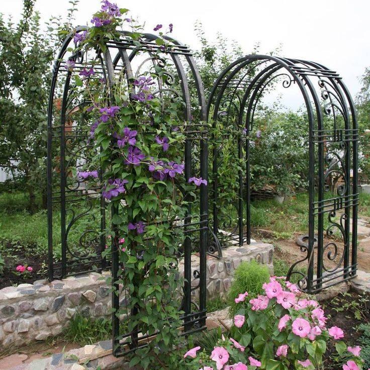 Арки для роз: из металла и садовые деревянные арки для плетистой розы, кованые арки на даче в ландшафтном дизайне и другие варианты