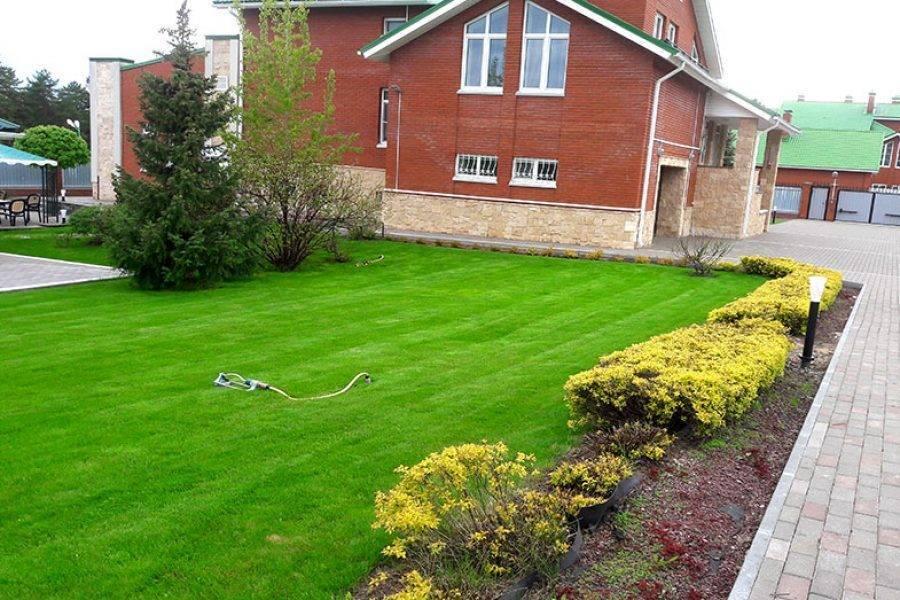 Искусственный газон для дачи своими руками: обзор лучших производителей и особенности ухода за искусственным покрытием (175 фото)