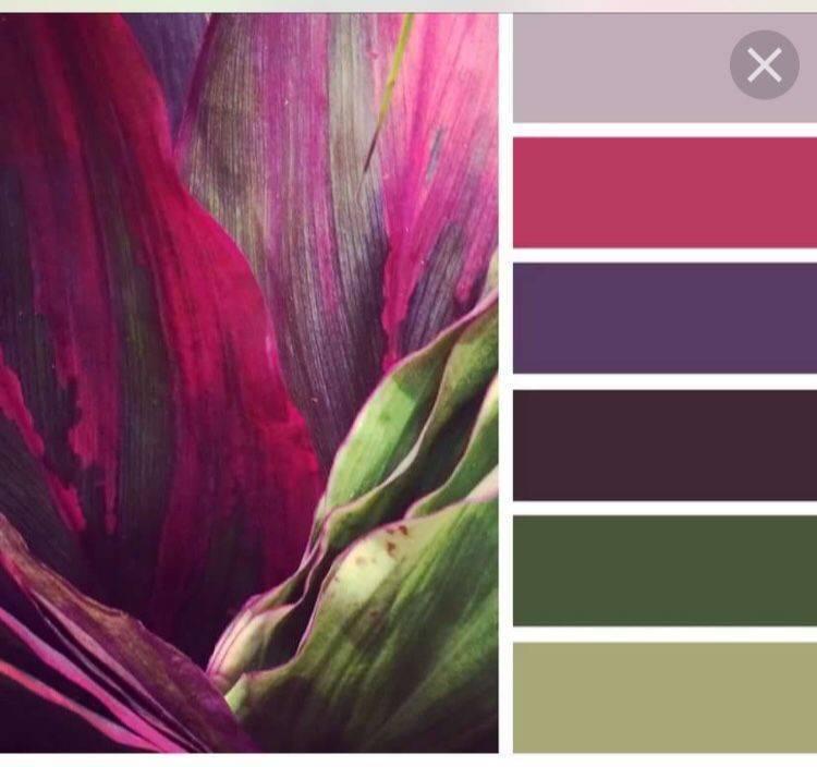 Бордовый цвет в интерьере: с чем сочетать и как применять