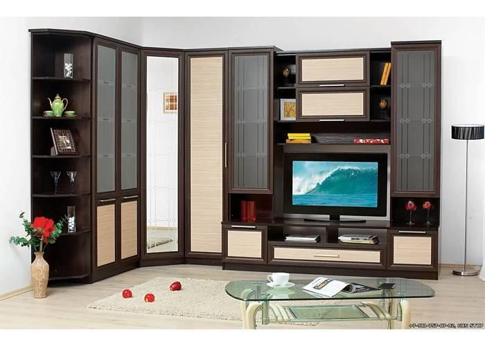 Шкаф в гостиную под телевизор (42 фото): выбираем шкаф во всю стену в зал, угловой навесной и встроенный шкаф для одежды