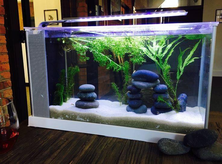 Задний фон для аквариума своими руками