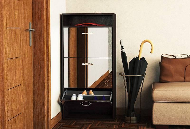 Фотографии примеров обувницы в интерьере прихожей комнаты