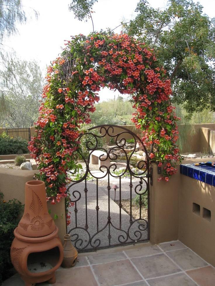 Арки кованые, фото: уличные, садовые и для дома, интерьера, входные, над воротами и калиткой, для роз и винограда, в виде дерева, разные цвета